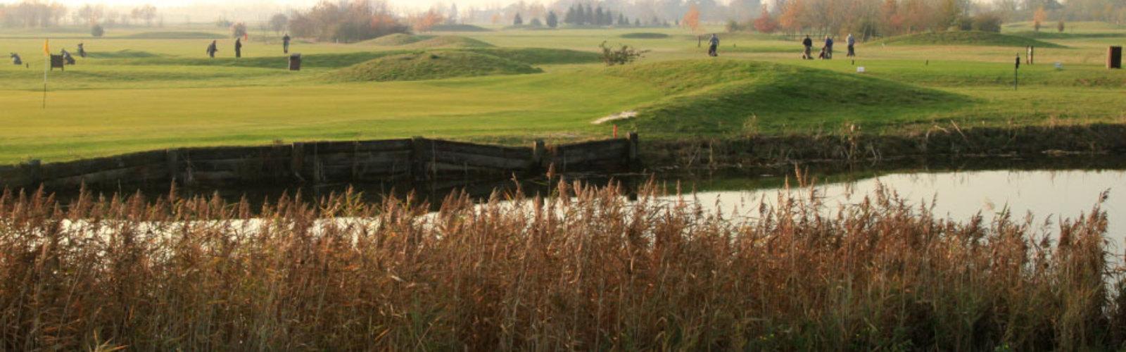 Thorney golf 960x450