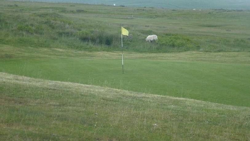 Merthyr tydfil golf club 1 823x420