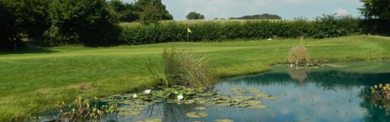 Coed y mwstwr golf club