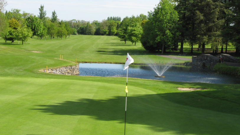 Black bush golf club 034255 full