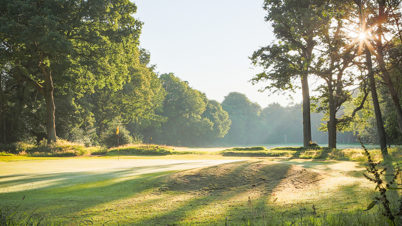 Limpsfield golf %2816 of 164%29 3